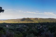 IMG_3308-Panorama